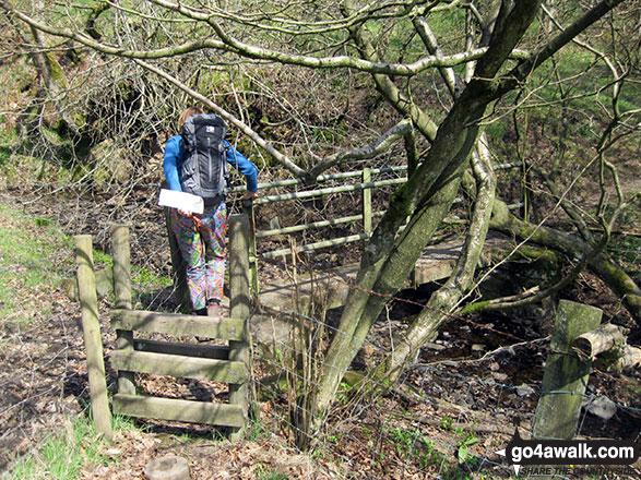 My wife negotiating a footbridge over Warslow Brook near Upper Elkstone