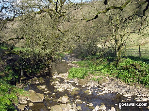 Hoo Brook near Butterton