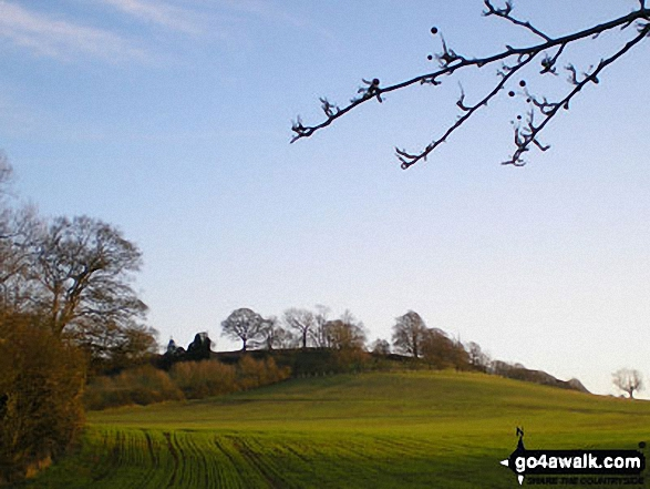 Arbury Hill from near Staverton Lodge,