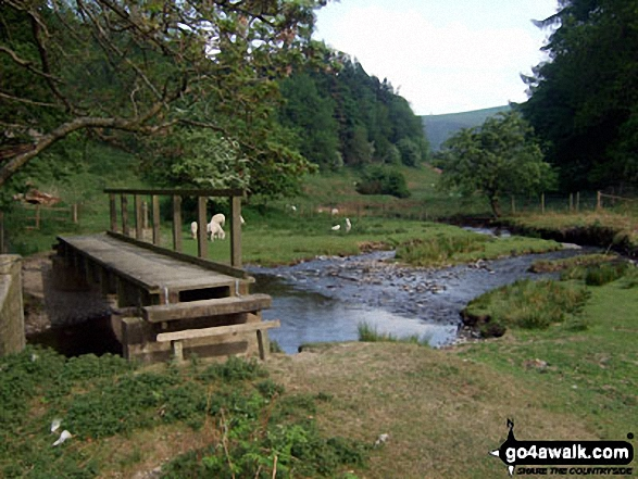 The footbridge over Harley Dingle Brook, Lower Harley, Radnor Forest