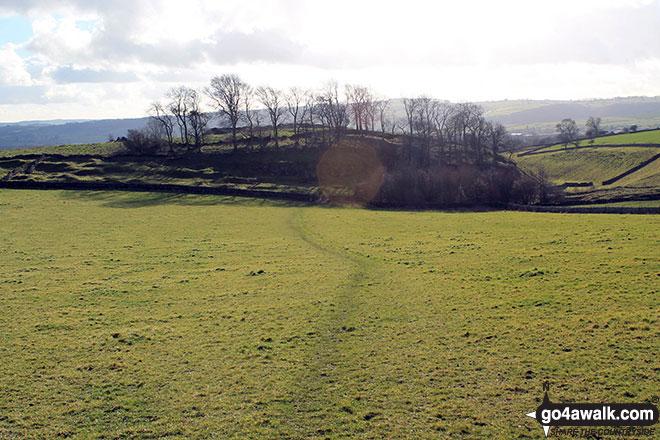 Walk d215 Longstone Edge, High Rake, Calver and Stoney Middleton from Eyam - Coppice from the bottom of Longstone Edge