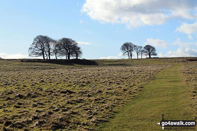 Longstone Moor