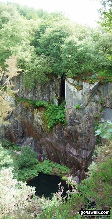Bryn-Eglwys Quarry