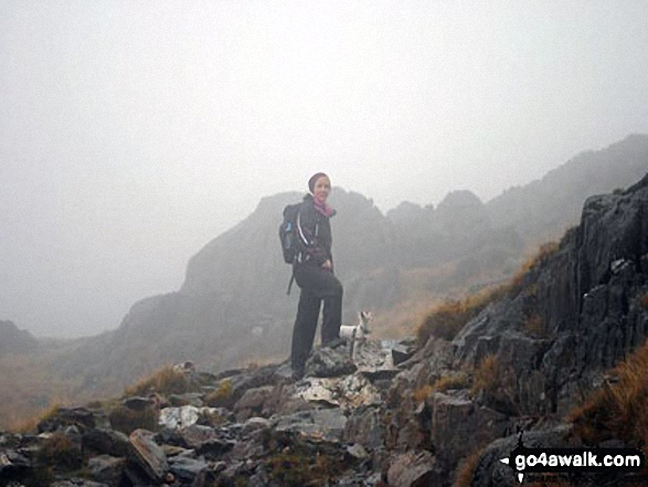 It's a bit foggy but here is a photo of me and our little hiking Jack Russell at the top of Snowdon :). Walk route map gw126 Snowdon via The Llanberis Path photo