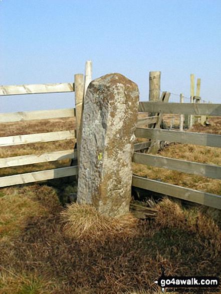 Tom Smith's Stone
