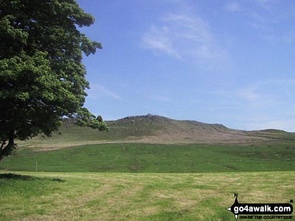 Fields near Embsay