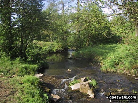 Stream near Flasby