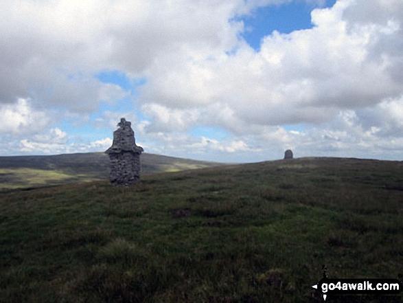 Tower/Currick on Murton Herds