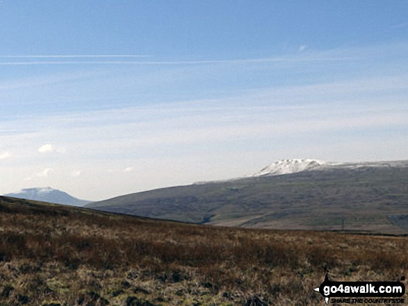 Snow on Whernside (left) and Pen-y-ghent from the path up Great Knoutberry Hill (Widdale Fell)