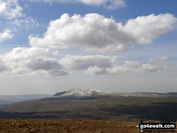 A snow capped Pen-y-ghent from Great Knoutberry Hill (Widdale Fell)