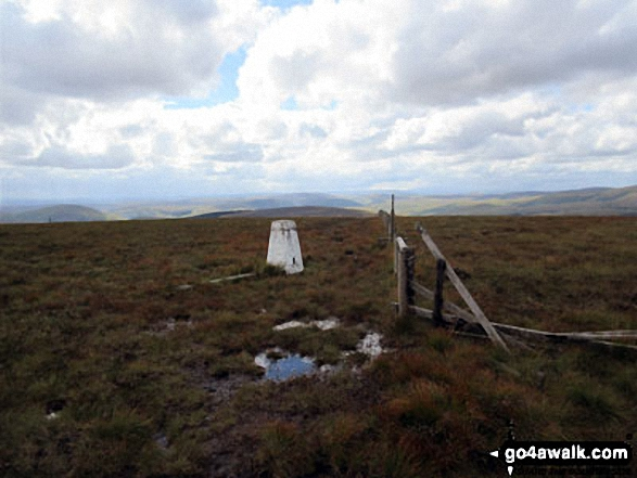 The boggy approach to Bloodybush Edge summit trig point