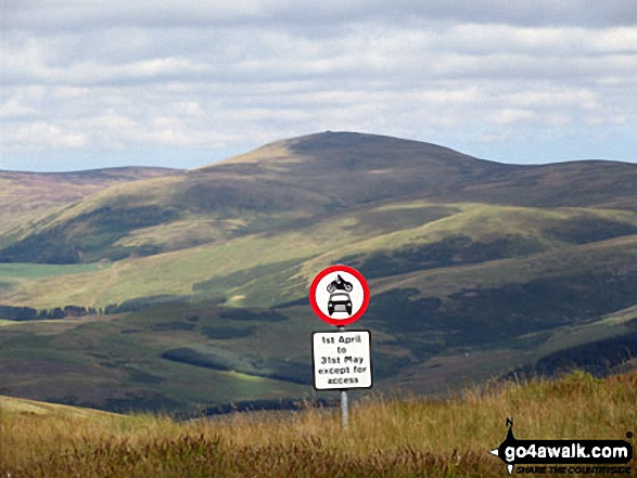 A great sign on Windy Gyle. Walk route map n157 Swineside Law and Windy Gyle from Wedder Leap, Barrowburn photo