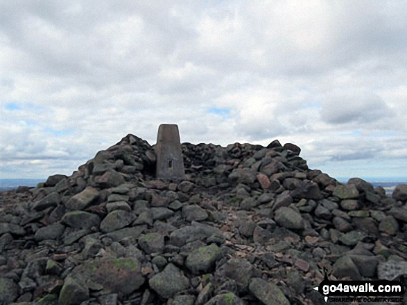 Hedgehope Hill summit cairn and trig point