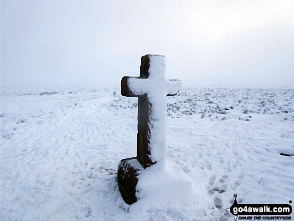 Snow on Cowper