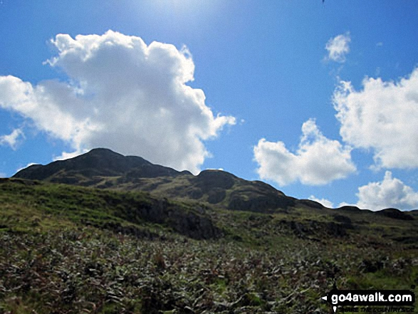 Looking up to Green Crag from near the top of Birker Force, Eskdale