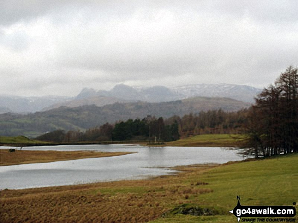 The Langdale Pikes from Wise Een Tarn on Claife Heights