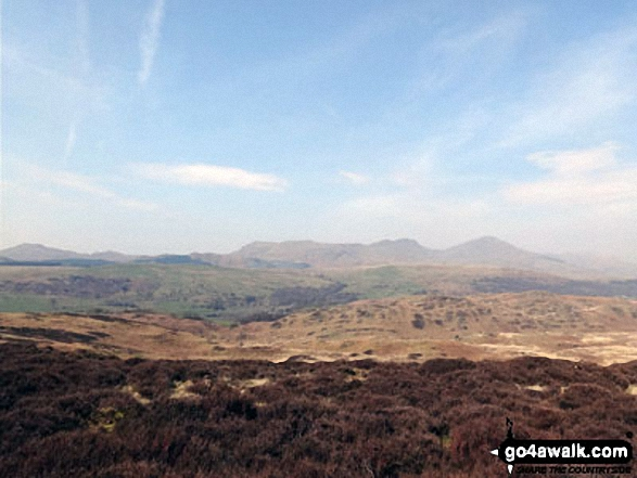 The Coniston Fells from Yew Bank (Blawith Fells)