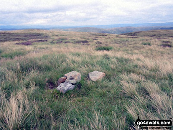 The Forest (Bannisdale) summit cairn