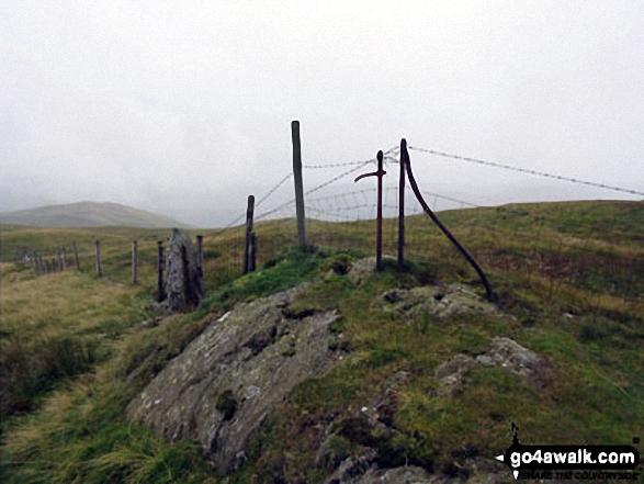 Fence posts near the summit of Capplebarrow