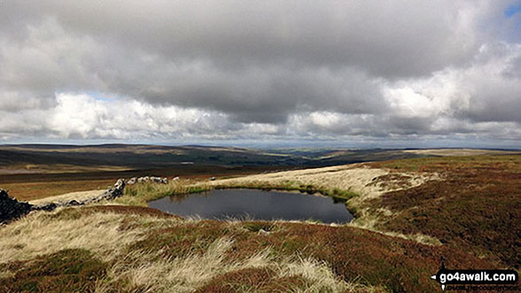 A pool on Middlehope Moor
