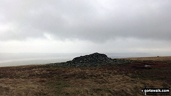 Walk c439 Black Combe and White Combe from Whicham Church, Silecroft - Apporaching White Combe summit cairn