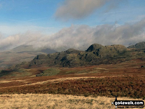 Green Crag (Ulpha Fell) from Great Worm Crag