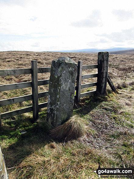 Walk n114 Grey Nag and Black Fell (Haresceugh Fell) from Gilderdale Bridge - Tom Smith's Stone