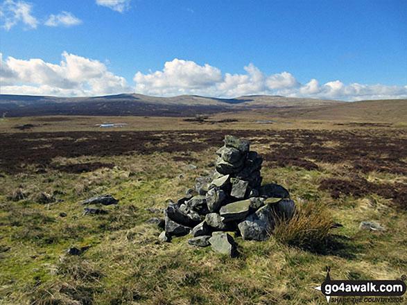 Bellbeaver Rigg (Tynehead Fell) summit cairn