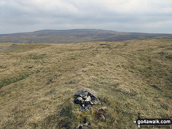 Walk Long Fell walking UK Mountains in The North Pennines  Cumbria    England
