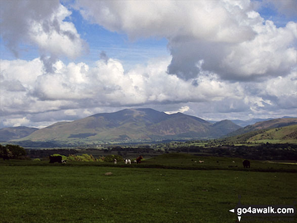 The Skiddaw Massif from the path up Clints Crags