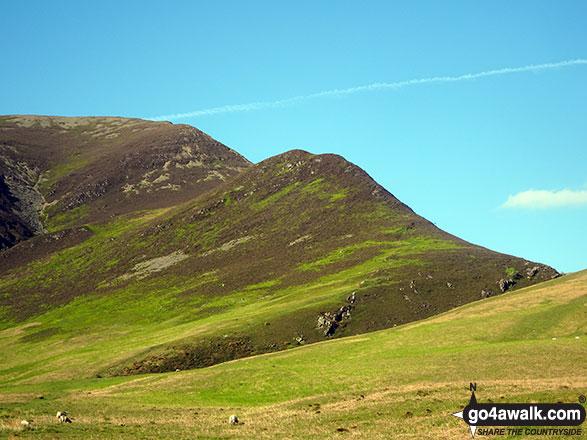 Walk c246 Hopegill Head and Grasmoor from Lanthwaite Green - Whin Ben (centre) and the Whiteside Ridge from Lanthwaite Green