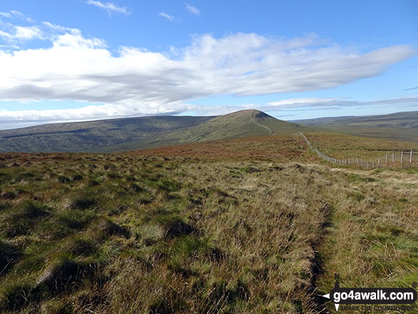 The path from Little Whernside to Great Whernside