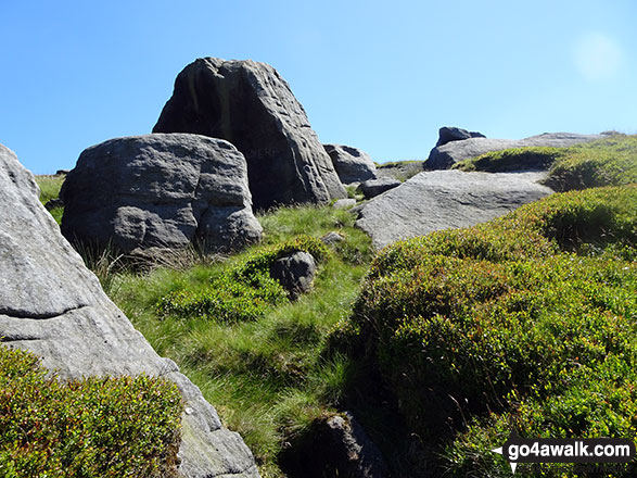 Rock formations on Lad Law (Boulsworth Hill)