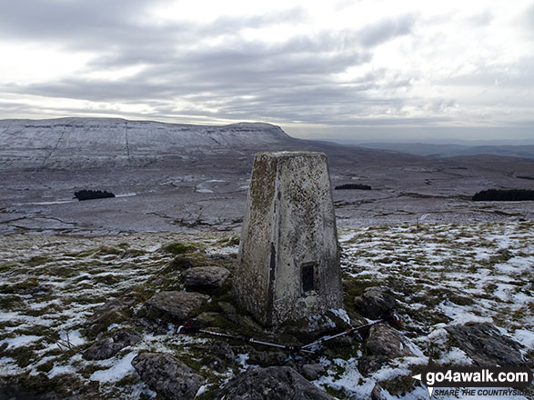 The trig point on the summit of High Green Field Knott (Cosh Knott)