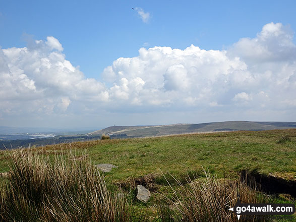 Jubilee Tower on Darwen Hill (Darwen Moor) from the summit fo Great Hill