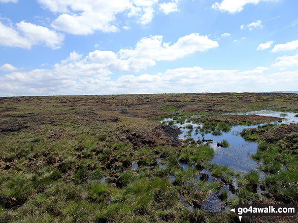 Bog on Featherbed Moss (Chew Reservoir)