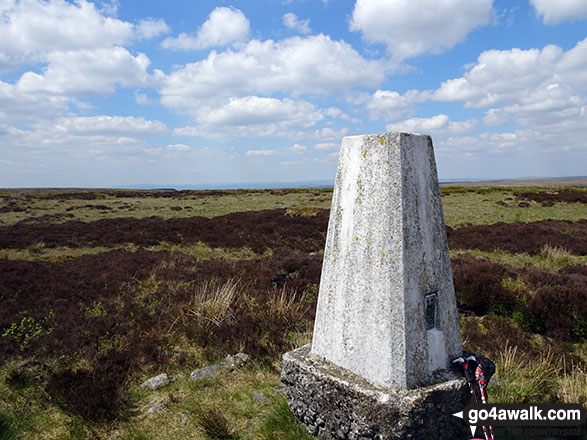 Featherbed Moss (Chew Reservoir) Summit Trig Point