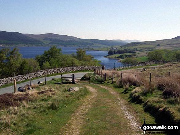 Llyn Celyn from the lower slopes of Arenig Fawr near Pant-yr-Hedydd. Walk route map gw138 Arenig Fawr from Pont Rhyd-y-Fen photo