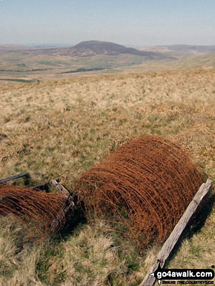 Arenig Fach from a rusting fence roll on the lower slopes of Moel Llyfnant