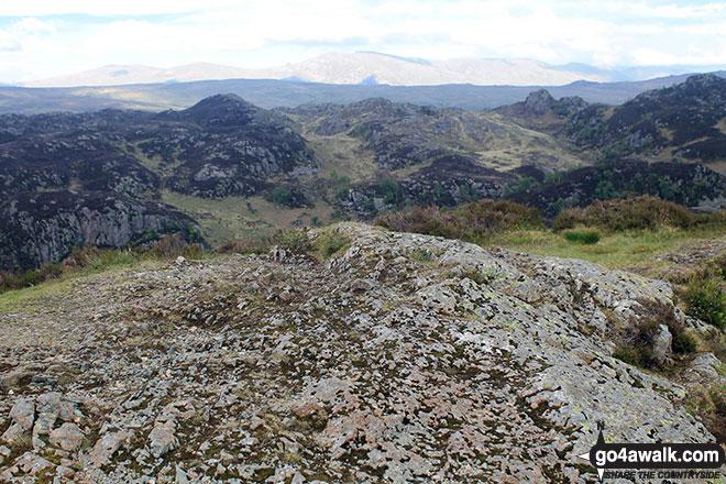 Walk c369 High Raise, Ullscarf and Grange Fell from Rosthwaite - The bare rocky summit of King's How