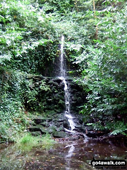 Waterfall near Stable Copse. Walk route map su113 Friday Street from Westcott photo