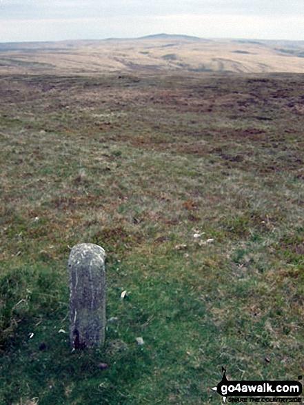 Drygarn Fawr from a boundary stone on Gorllwyn (Pen y Gorllwyn)