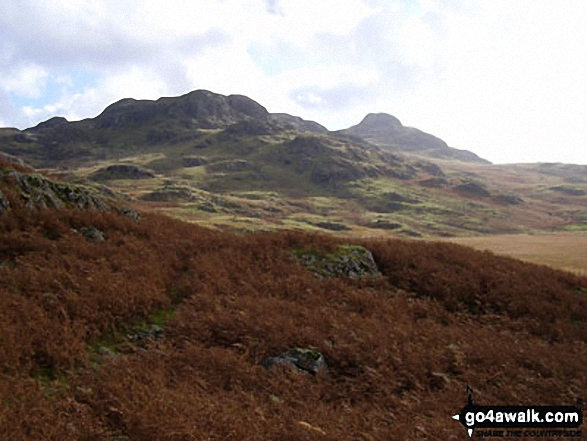 Crook Crag (left) and Green Crag (behind right) from Low Birker Tarn