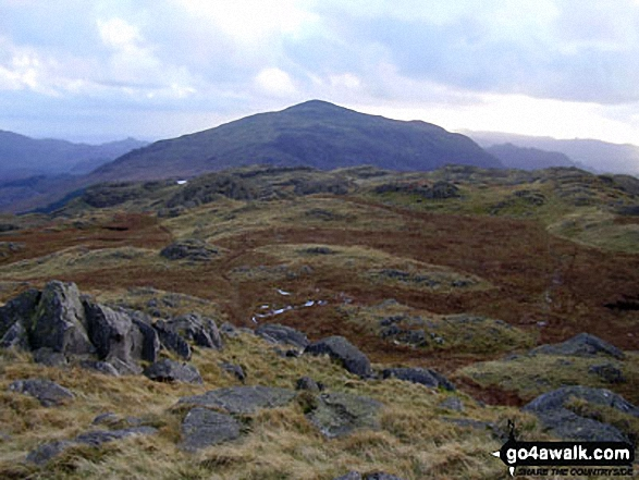 Harter Fell (Eskdale) from Hard Knott