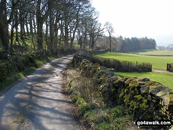 Lane near Kiln Head