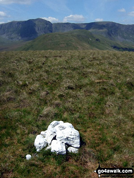 Lechwedd Du summit cairn with the Aran Fawddwy ridge (Aran Fawddwy, Erw y Ddafad-ddu & Aran Benllyn) in the background