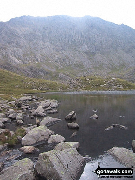 The Glyderau from Llyn Bochlwyd