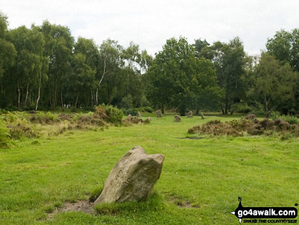 Nine Ladies Stone Circle from Ther King Stone