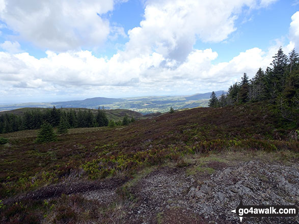 The view from the summit of Ullister Hill
