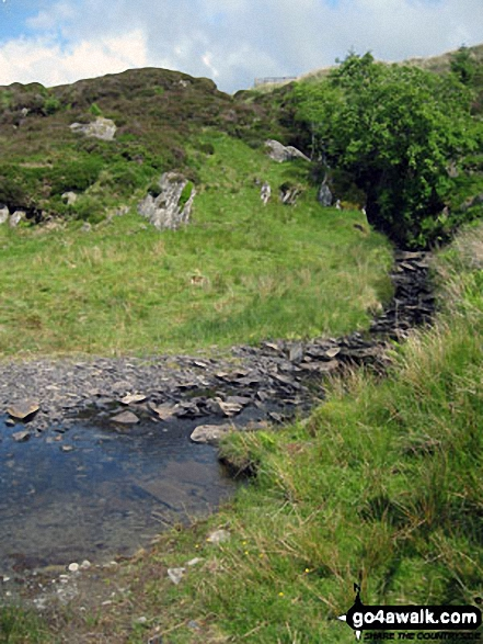 Afon Bwlch y Groes on the lower slopes of Drosgol (Bwlch y Groes)